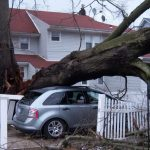 What to Do After Storm Damage to Your Car
